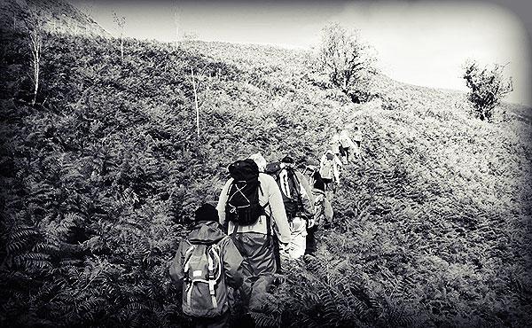 ハイキングはダイエットと全身持久力アップに最適な運動!メタボ気味の人が注意する登山の鉄則