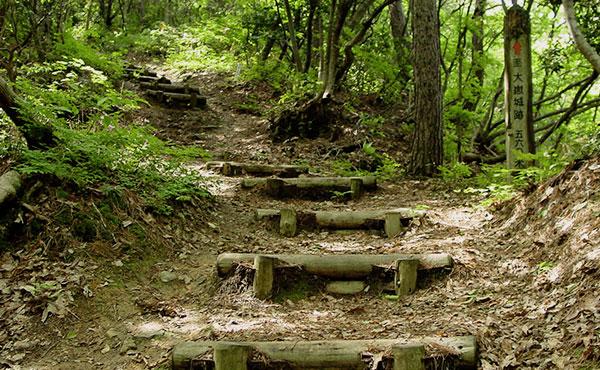 一人歩きトレッキングのイロハは、ワンディハイキングで習得しよう