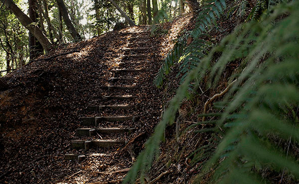 山登りでバテないペース配分の考え方と方法