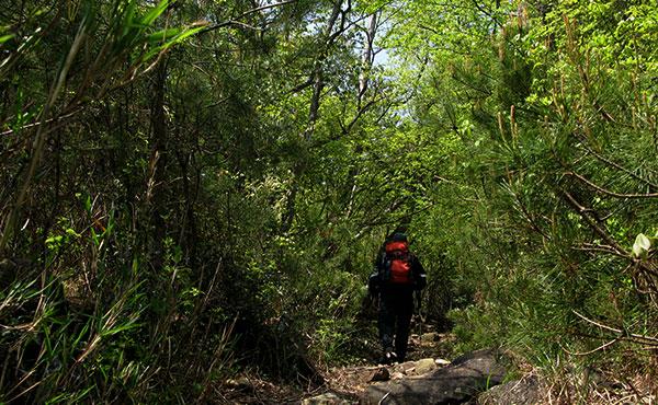 山でバテない歩き方、疲れない歩き方