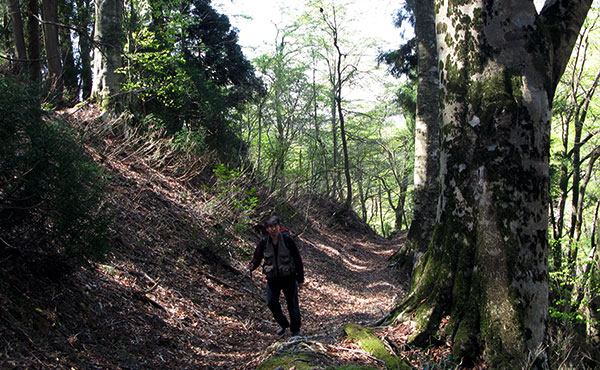 グループ登山中、仲間が事故に遭って締まった時に行う対策