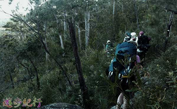 登山者グループ