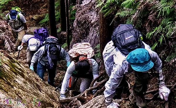 最低限、登山で必要なファーストエイドキットの基本