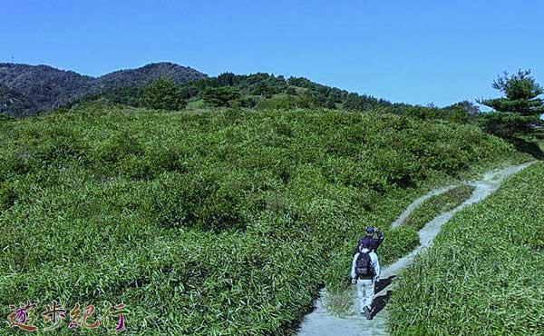 六甲山系、東お多福山(ひがしおたふくやま)で高原登山
