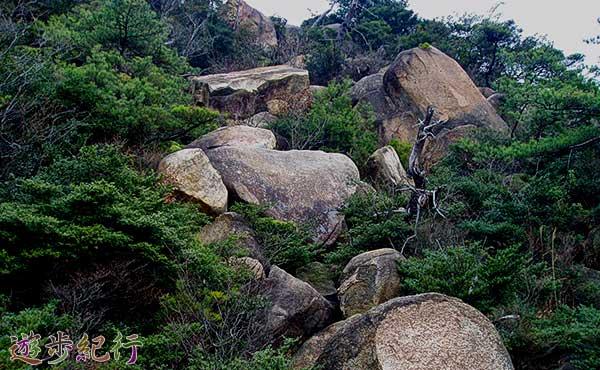 六甲山系のパワースポットを巡ってゴロゴロ岳へ