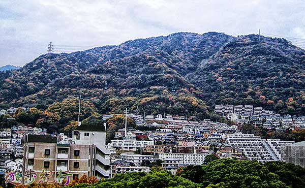 神戸六甲山系の隠れ山、長峰山で360度の眺望を楽しむ