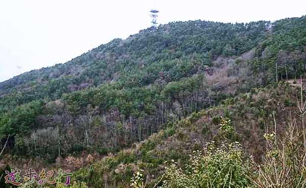 京都西山の一番人気、ポンポン山