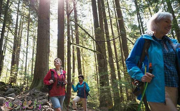 登山に適した身体と体力作りのための筋力と身体能力アップトレーニングのポイント